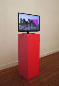 installation view with pink pedestal
